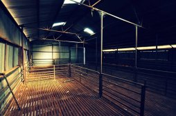 Gindalbie Woolshed