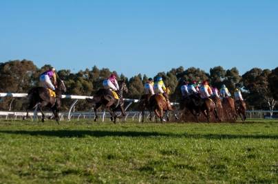 Off and running in 2013's Kalgoorlie Cup | Discover The Round