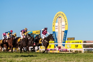 Classique Ivory, ridden by Shaun O'Donnell and trained by Gino Poletti, crosses the finish line to win the $150,000 XXXX-Gold Kalgoorlie Cup (2300m).