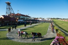 The view over the KBRC mounting yard before the running of the 2013 Hannans Handicap.
