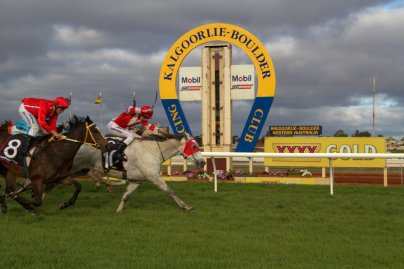 Lyoveldio with Aaron Mitchell on board hits the line to win the Mm Electrical/Data Supplier-68 - 1600m