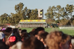 The Kalgoorlie Cup (2012). The highlight of the week-long carnival, where thousands of racegoers pack the lawn and the tents of the Kalgoorlie-Boulder Race Course.