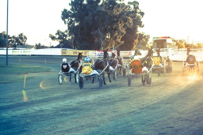 Friday night trots (2012)