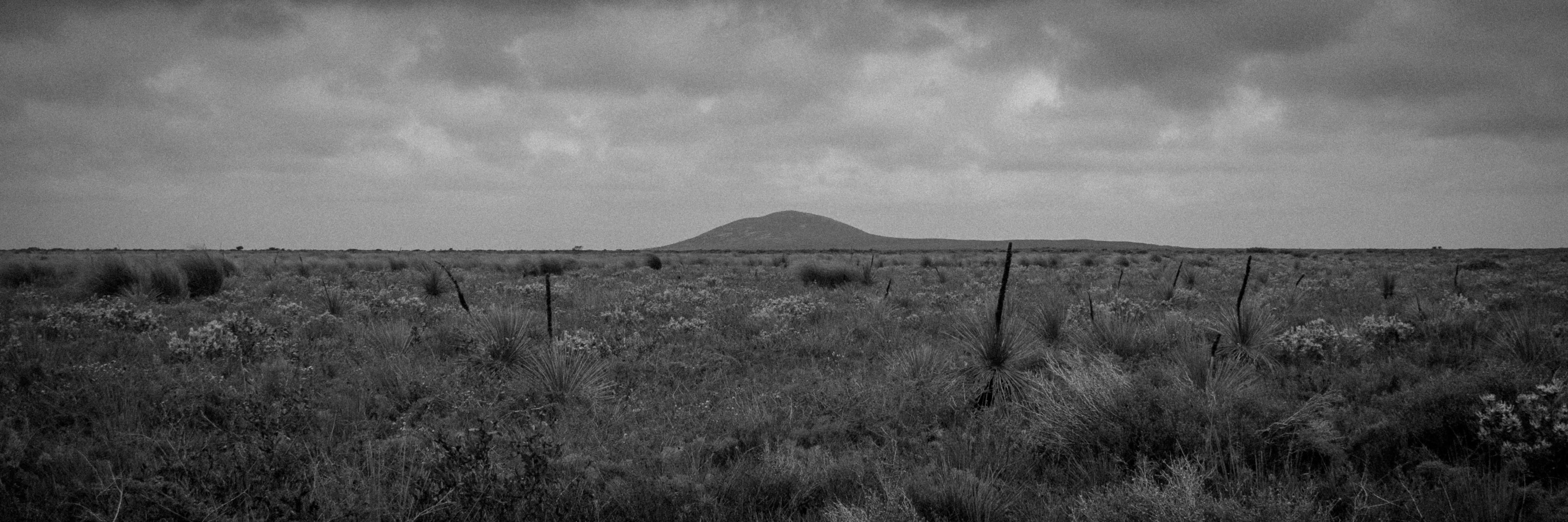 Documentary photography essay